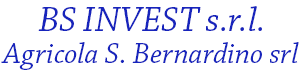BS Invest Logo